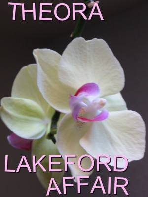 Lakeford Affair