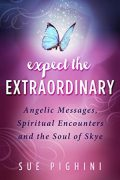 Expect the Extraordinary : Sue Pighini